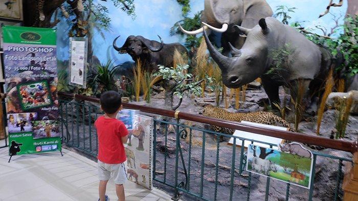 Bisa Lihat 2.500 Spesies Satwa di Rahmat International Wildlife Museum and Gallery