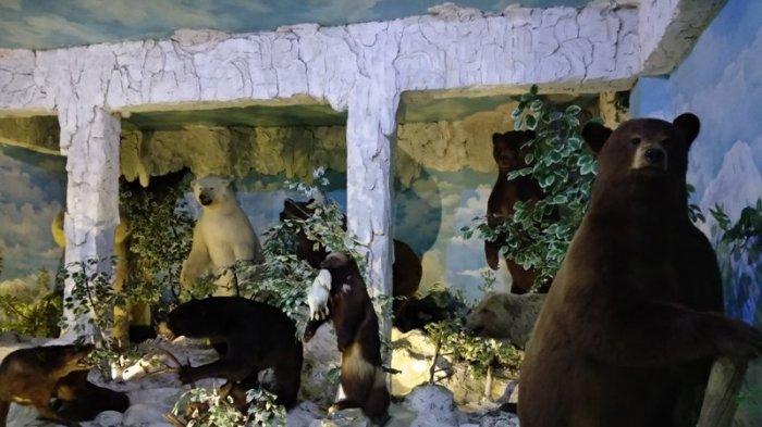 TFC PREMIUM: Sambut Hari Museum, Rahmat International Wildlife Museum and Gallery Berbagi Suvenir
