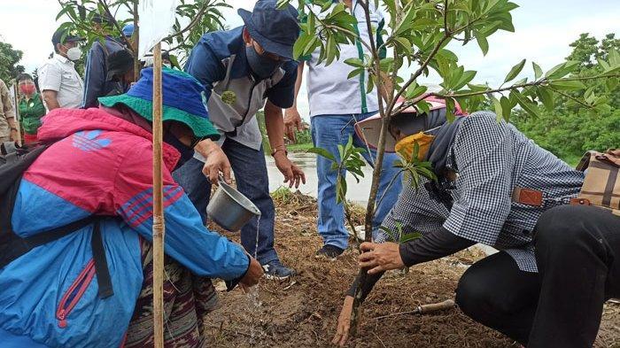 YBHI Peringati Hari Menanam Pohon Indonesia dengan Tanam 500 Pohon Buah di Benteng Sungai Deli
