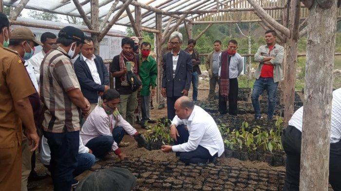 Bupati Taput Resmikan Rumah Pembibitan Kemenyan Komunitas Masyarakat Adat Tornauli