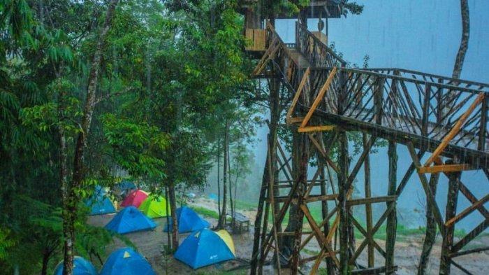 Rumah Pohon Habitat di Langkat, Sumatera Utara.