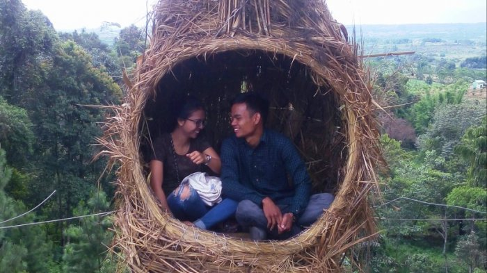 Rumah Pohon Unik, Bentuk Sarang Burung Raksasa di Puncak Sidikalang