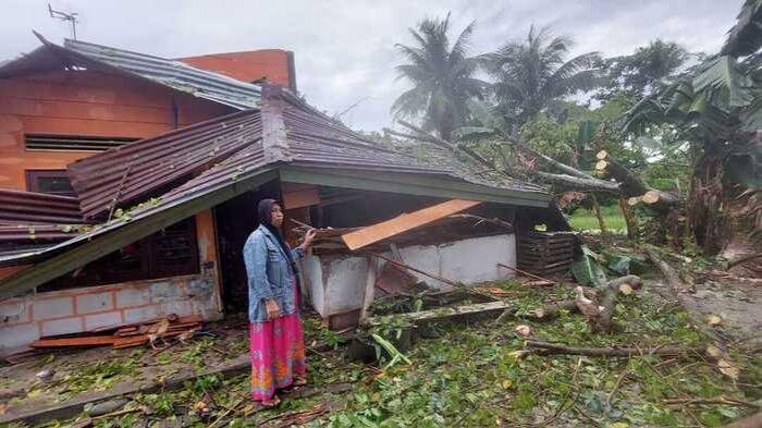 Sergai Dilanda Hujan Deras Disertai Angin Kencang, Pohon Roboh Timpa Rumah Warga