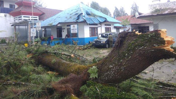 Diterpa Angin Kencang, Satu Unit Mobil Milik Pegawai Dinas Pertanian Karo Rusak Tertimpa Pohon