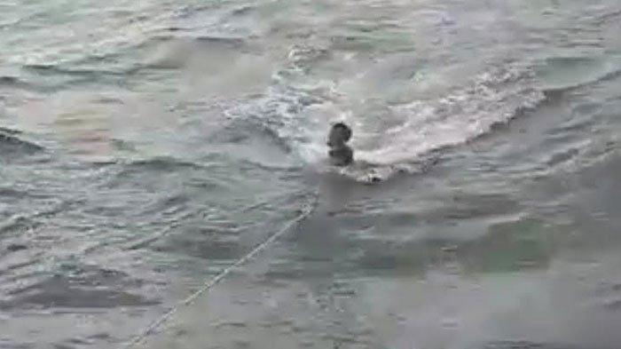Kisah Seorang Nelayan 5 Hari Terombang Ambing di Laut Lepas, Kapalnya Terbalik saat Cari Ikan