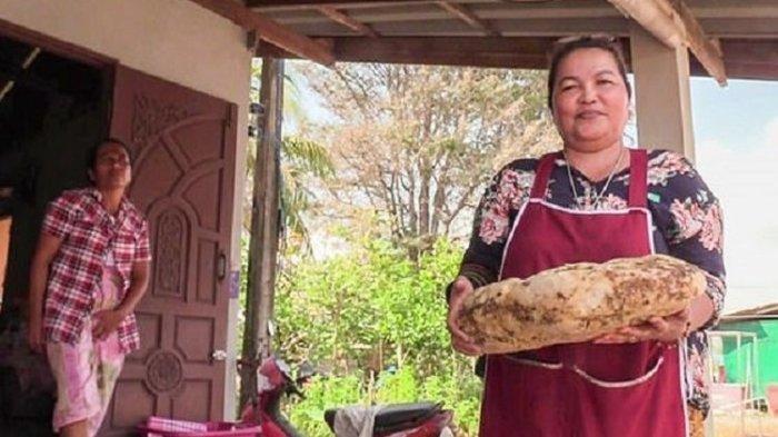 Temukan Muntahan Ikan Paus, Wanita Ini Bakal Kaya Mendadak, Ditaksir Muntahan Paus Laku Rp 3,7 M