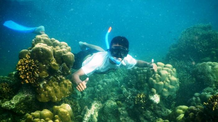 Tentara Laut Gandeng Mahasiswa Transplantasi Terumbu Karang di Pulau Salah Namo