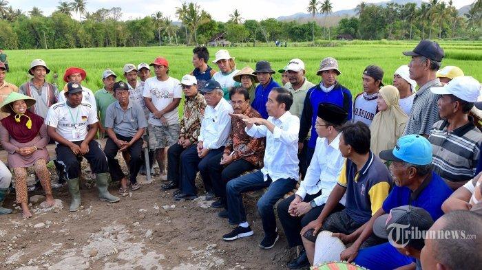 Ibu Kota Baru - Terkini Muncul Lokasi Alternatif Baru Setelah Jokowi Bantah Menteri Sofyan Djalil