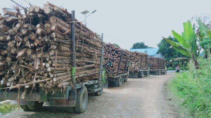 Truk pengangkut kayu eukaliptus ke PT TPL diberhentikan oleh masyarakat Matio. (Tribun-medan.com/HO)