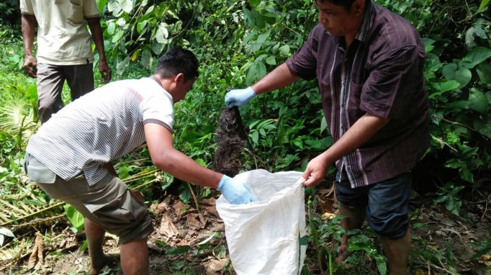 ASTAGA! Warga Temukan Tulang Belulang di Pinggir Sungai Brombos