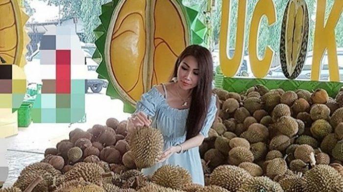 7 Oleh-oleh Makanan Khas Kota Medan Yang Terkenal dan Wajib Dicoba, Ada Durian hingga Bika Ambon