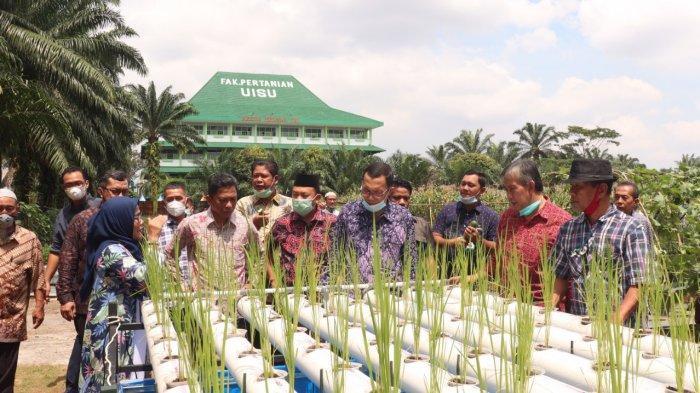 URBAN FARMING: Dekan Fakultas Pertanian UISU Dr. Ir. Murni Sari Rahayu, MP tengah menjelaskan konsep urban farming tanaman padi yang dipadukan dengan kolam nila di lokasi ekowisata Fakultas Pertanian UISU kemarin (14/11).