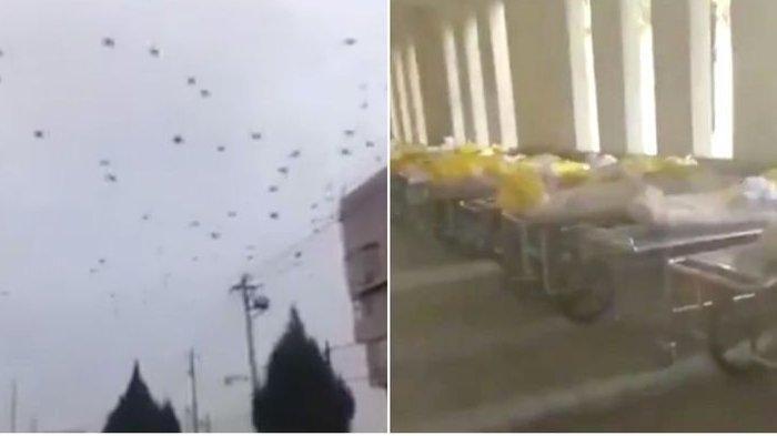 Viral Video Detik-detik Ribuan Burung Gagak di Langit Wuhan China, Rekaman Video Menyeramkan