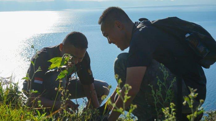 Dukung Kaldera Toba Sebagai UNESCO Global Geopark, Jimmy Sihombing Tanam Pohon di Silahisabungan