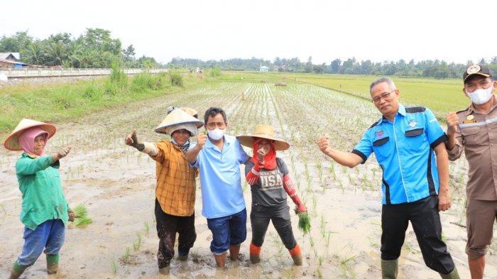 Wali Kota Binjai Sebut Petani Adalah Pahlawan Pangan, Berharap Pangan Melimpah di Binjai