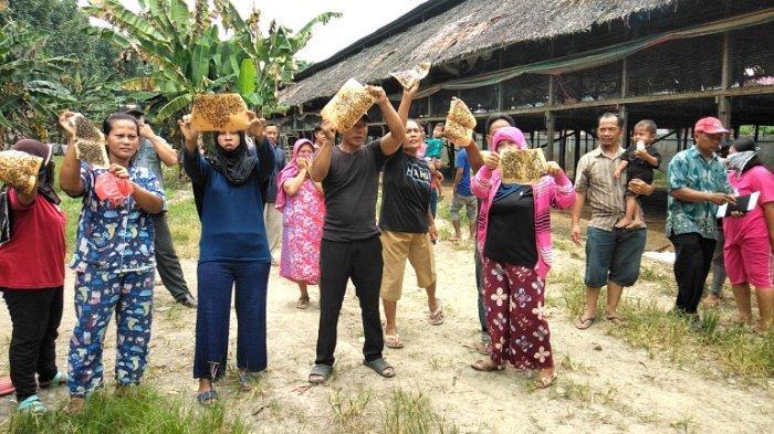 Soal Wabah Lalat di Tanjung Morawa, Keputusan Akhir Pengusaha Diberikan Waktu Urus Izin