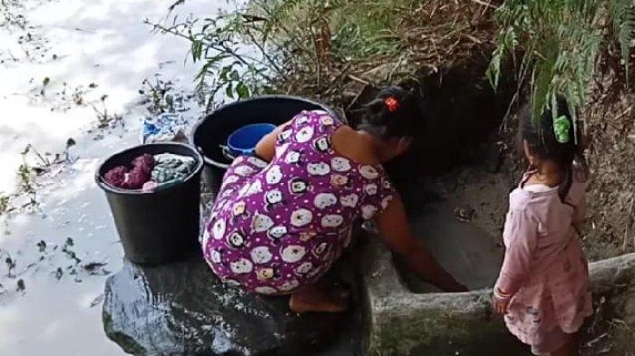 Kado Pahit HUT Ke-73 RI, Warga Ronggur Ni Huta Bersabar Menunggu Air Kubangan