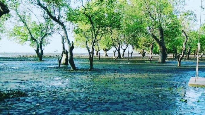 Pesona Pantai Kwala Serapuh