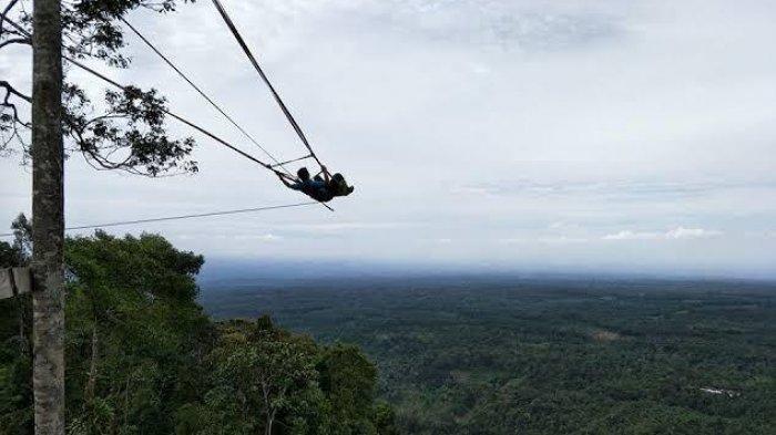 Menikmati Pemandangan Alam dari Ketinggian Dari The Yo's Hill Langkat