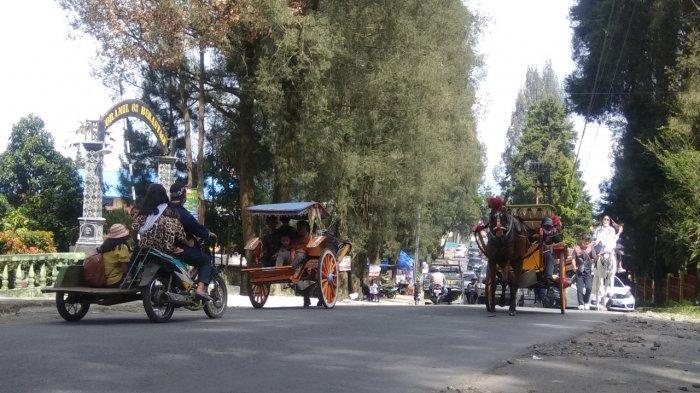 WAJIB Dicoba, Berkeliling Kota Berastagi Sambil Menikmati Sejuknya Udara dengan Menunggangi Kuda