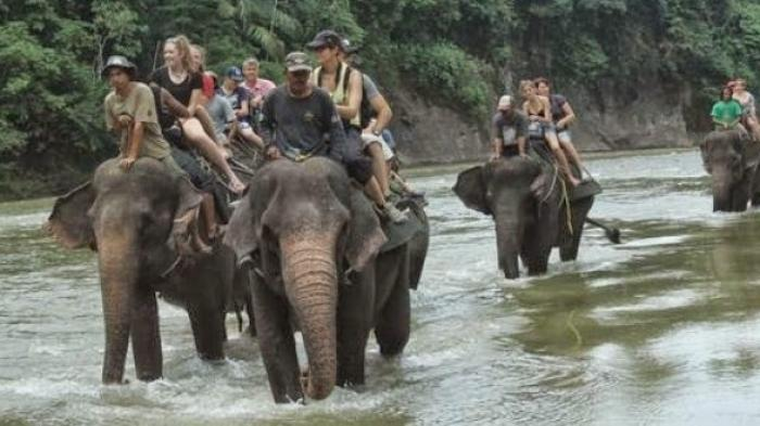 Cobain Yuk 3 Tempat Wisata Dekat dengan Alam dan Antimainstream di Sumatera Utara