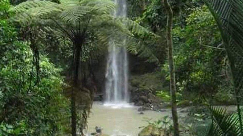 panorama-sampuran-widuri-di-dolok-merawan-kabupaten-serdangbedagai.jpg