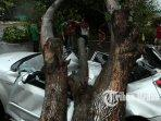 28062021_pohon_tumbang_danil_siregar-2.jpg