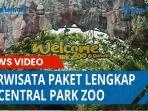 berwisata-paket-lengkap-di-central-park-zoo.jpg