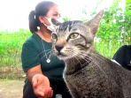 bro-kucing-kampung-pemakan-balsem.jpg