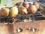 buah-kelapa-yang-dibakar-bisa-menjadi-obat-seperti-masuk-angin.jpg