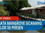 dampak-ppkm-darurat-wisata-mangrove-sicanang-anjlok-50-persen-banyak-fasilitas-yang-rusak-qq.jpg