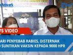 hindari-penyebab-rabies-disternak-karo-suntikan-vaksin-kepada-9000-hpr-sejak-awal-september.jpg