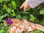 jenazah-korban-msx-ditemukan-di-pinggir-jalan-lintas-sumatera.jpg