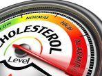 kelebihan-kolesterol-dalam-tubuh-bisa-menyebabkan-berbagai-penyakit.jpg
