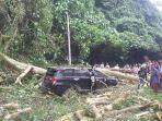 kondisi-mobil-yang-tertimpa-pohon-tumbang-di-desa-sembahe.jpg