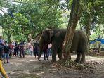 medan-zoo-kunjungan-1.jpg