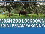 medan-zoo-lockdown.jpg