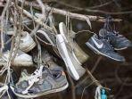 menilik-potret-ratusan-sepatu-yang-digantung-di-hutan-alasannya-masih-misteri.jpg