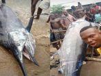nelayan-nigeria-dapat-ikan-marlin-biru.jpg