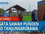 Nikmati Suasana Alam Pedesaan di Wisata Sawah Punden Rejo Tanjungmorawa