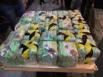 polisi-sumut-gagalkan-peredaran-narkoba-seberat-50-kg.jpg