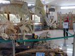 rahmat-international-wildlife-museum-and-gallery_20180704_143555.jpg