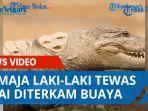 Remaja Laki-laki Ditemukan Tewas Usai Diterkam Buaya di Sungai Malaoge