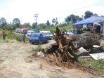 situasi-pohon-tumbang-yang-menutup-jalan-dan-menimpa-mobil-di-jalan-kota-cane.jpg