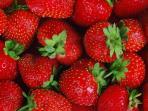 stroberi-buah.jpg