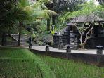 suasana-t-garden-dengan-menawarkan-suasana-khas-alam.jpg