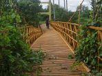 warga-nekat-melintasi-jembatan-titi-bambu.jpg