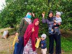 wisatawan-berfoto-di-ladang-jeruk-yang-menyajikan-wisata-petik-sendiri-di-kawasan-kecamatan-merek.jpg
