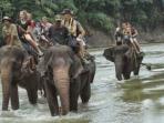 wisatawan-tangkahan-naik-gajah-tribun-medancom_20150731_213042.jpg