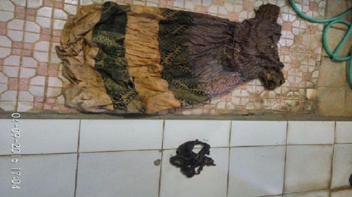 Andi Temukan Kerangka Berdaster di Guntung Damar Banjarbaru